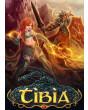 Tibia Premium - 90 Days Pre-paid